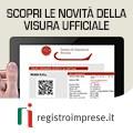 La nuova visura Registroimprese.it