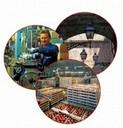 Fedeltà al Lavoro ed al Progresso Economico 2017